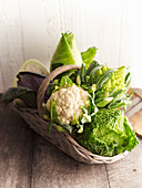 Cauliflower, savoy cabbage, Romanesco broccoli, pointed cabbage and white cabbage in a basket