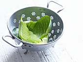 White cabbage leaves in a colander