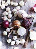 Verschiedene Zwiebeln, ganz und angeschnitten
