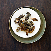 Morels on a white plate