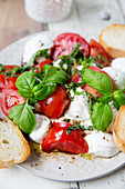 Caprese salad with buffalo mozzarella, tomatoes and basil