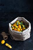 Kumquats in a sack