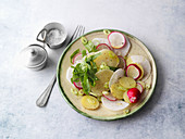 Wild garlic and radish salad with sour milk cheese