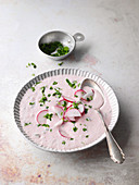 Cold vegan radish and herb soup