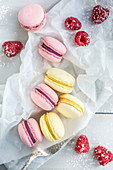 Raspberry and lemon macaroons