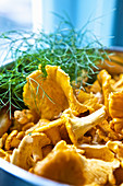 Fresh chanterelles with dill in a bowl