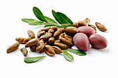 Oliven: frisch und getrocknet vor weißem Hintergrund