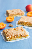 Apricot tray bake slices with coconut