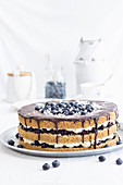Summer cake with a nut sponge base and a blueberry cream filling