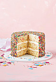 A fairy bread sponge cake with mascarpone buttercream