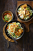 Indonesian fried tofu with peanut sauce (Tahu Goreng)
