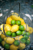 Lemons and limes in a wire basket