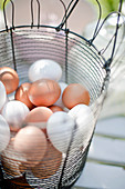 White and brown chicken eggs in a wire basket
