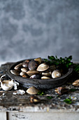 Clams in a wooden bowl