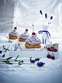 Vegan sour cherry cupcakes with lavender cream