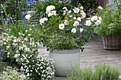 Arrangement mit weißen Blüten