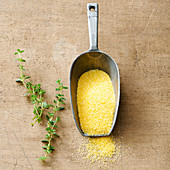 A scoop of polenta and fresh thyme sprigs
