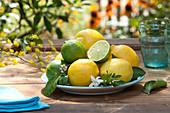 Teller mit Citrus limon ( Zitronen , Limetten ) und Zweig mit Blüten