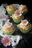 Vanilla Cupcakes topped with coconut and popcorn dust
