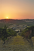 Sunset above the Herdade do Rocim winery, Alentejo, Portugal