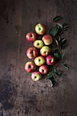 Bio-Äpfel auf dunklem Holz