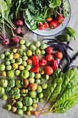 Frische Gemüseernte mit bunten Tomaten, roter Bete, Salat, Mangold, Bohnen und Paprika