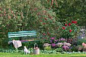Gartenbank unterm Apfelbaum