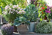 Arrangement aus Gemüse und Sommerblumen
