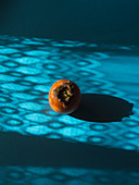 Still life with a persimmon on blue background
