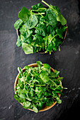 Spring spinach and watercress in wooden bowls