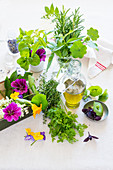 Herbs and edible flowers