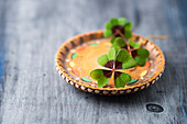 Lucky clover on a wooden plate