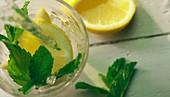 Wasser in ein Glas mit Minze und Zitrone gießen (Draufsicht)