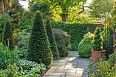 Garten mit Formschnitt-Gehölzen