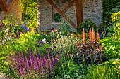 Beet mit Steppen-Salbei (Salvia nemorosa) und Lupinen (Lupinus) in Cottage-Garten