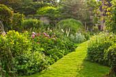 Cottage-Garten mit Pfingstrosen (Paeonia), Fingerhut (Digitalis), Frauenmantel (Alchemilla) und Wollziest (Stachys)