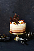 Multi-layer chocolate ice cream cake