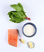 Ingredients for salmon in a sorrel and cream sauce