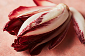 Red endive of the variety Trevisiano (close-up)