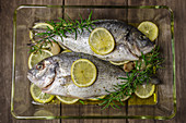 Fresh seabream with lemon slices and rosemary