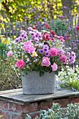 Herbstliches Gesteck mit Rosen und Astern in grauer Jardiniere