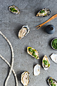 Oysters with salsa verde