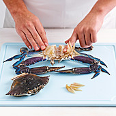 How to section raw or uncooked crab