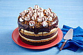 Easy S'mores cake