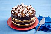 Cheesecake-Torte mit Schokolade und Marshmallows