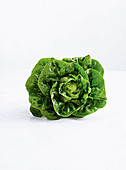 Crisp, bright-green lettuce