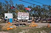 Hurricane Harvey relief camp, Texas, USA