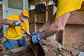 Hurricane Harvey cleanup, Texas, USA
