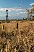 Wind turbine in a field, Texas, USA