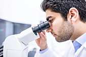 Scientist using microscope